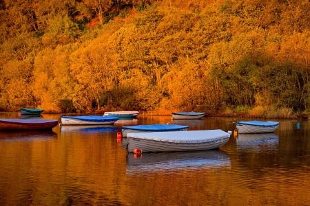 ősz hajós